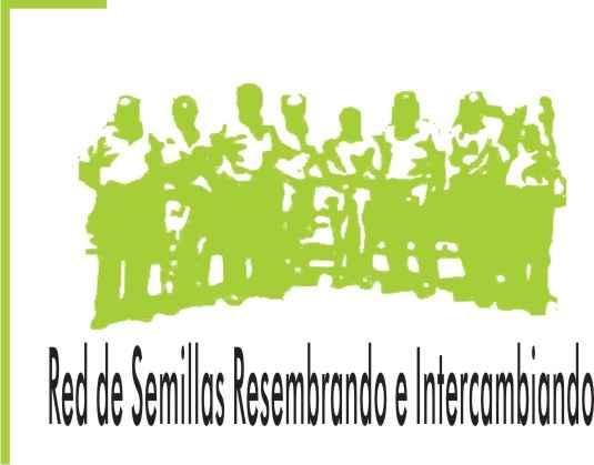 logo-rds-verde-x-web.jpg