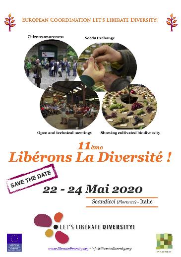 XI Encuentro Liberemos la Diversidad
